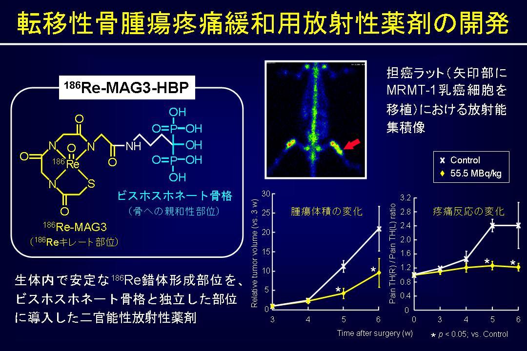 MAG3-HBP2